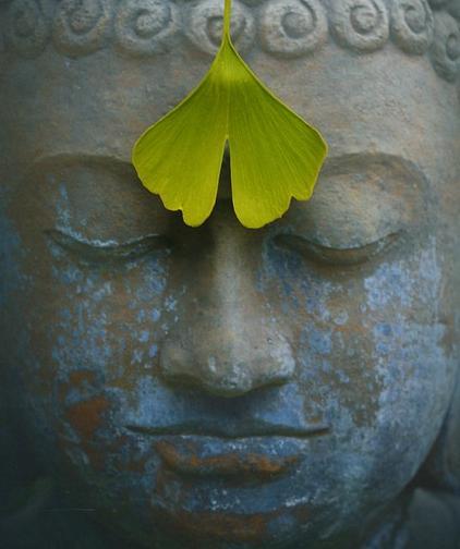 Aaj-Fir-Ek-Buddha-Ki-Talash-Hai