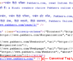 what is canonical tag in hindi