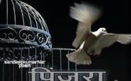 pinjra-hindi-poem-kavita